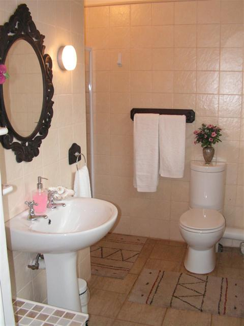 Bathroom with shower in the Double Suite